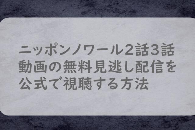 ニッポンノワール2話3話動画